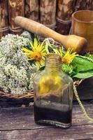 récolte d'herbes médicinales photo
