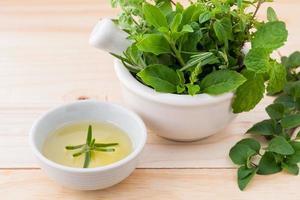 soins de santé alternatifs à base de plantes fraîches dans un mortier blanc photo