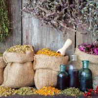 herbes médicinales dans des sacs de jute et des bouteilles d'huile essentielle