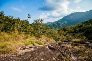 trekking dans la jungle sur koh phangan photo