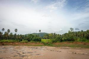 le large fleuve parmi la jungle.