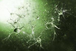 les neurones photo
