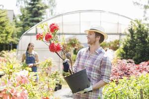 jardiniers photo