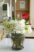 fleurs dans la chambre du patient à l'hôpital photo
