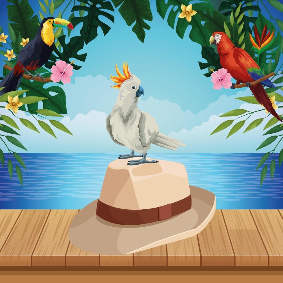fond d'été avec chapeau et oiseau vecteur