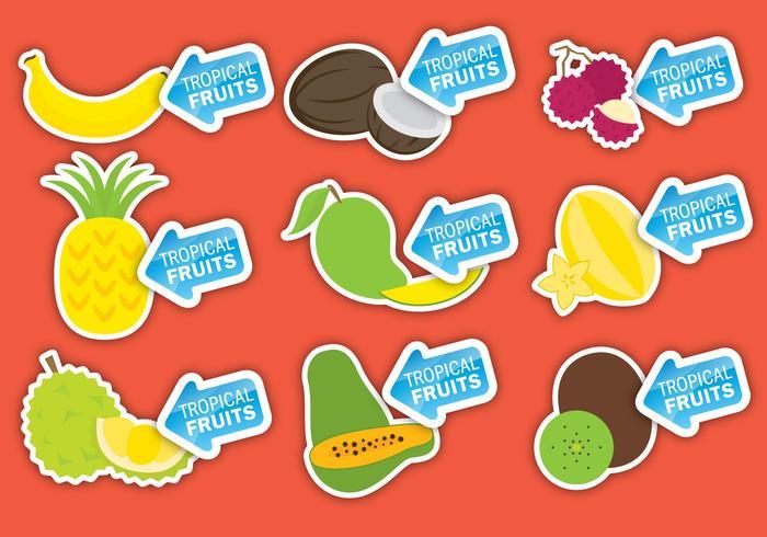 Étiquettes de fruits tropicaux vecteur