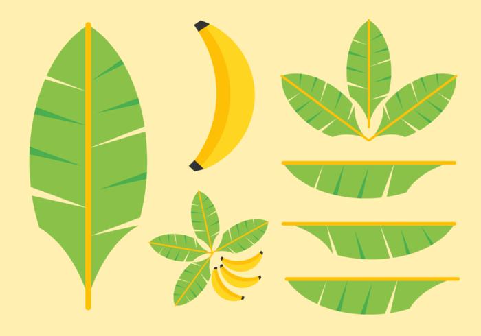 Pack gratuit de vecteur de feuilles de banane