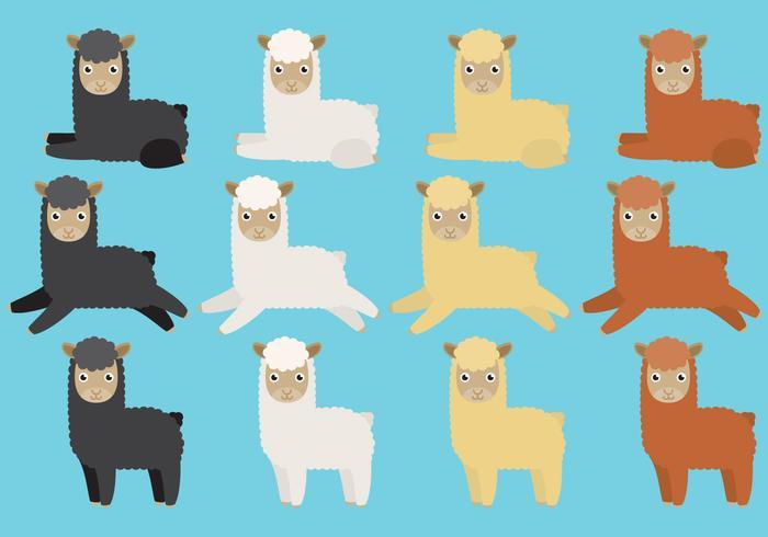 Des vecteurs de lama mignons vecteur