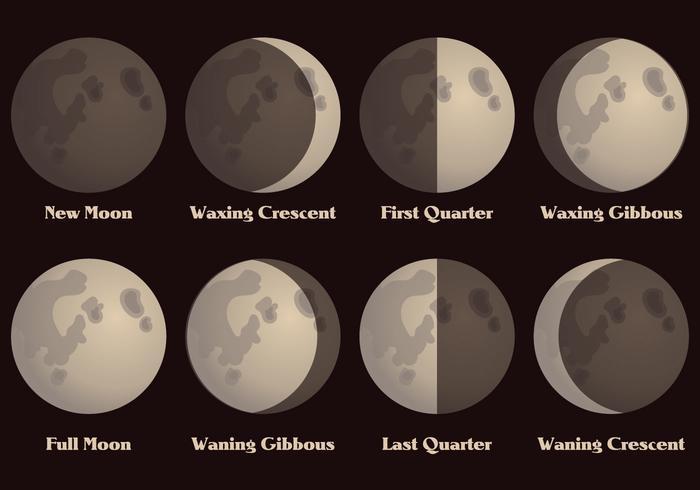 Vecteur des phases de la lune