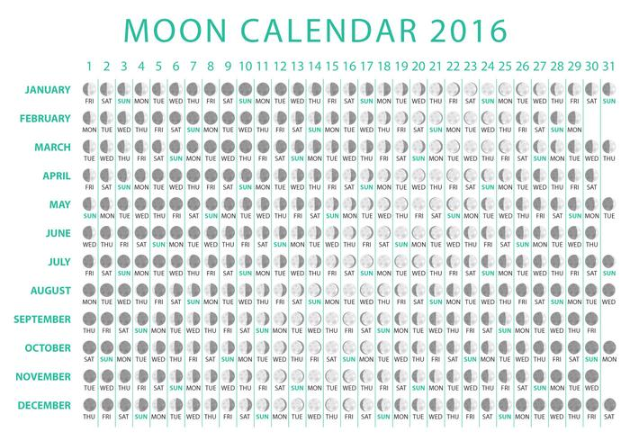 Lune Calendrier 2016 Vector