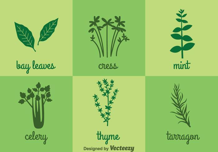 Icônes d'herbes et d'épices vecteur