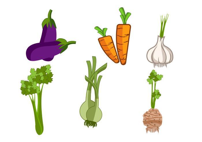 Légumes isolés et vecteur d'herbes
