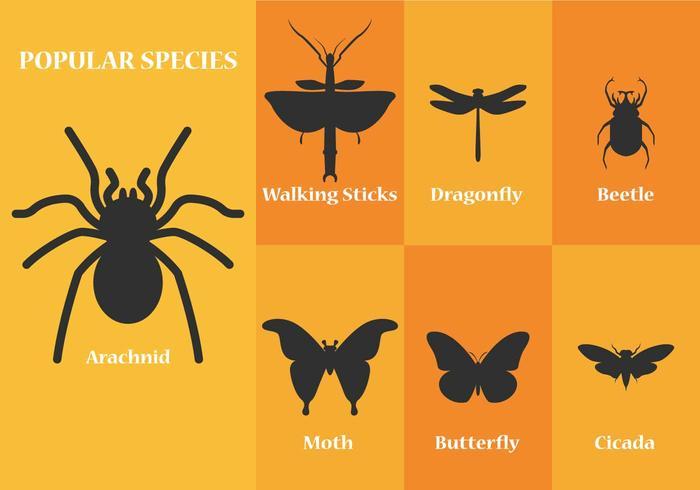 Silhouettes de vecteurs d'insectes vecteur