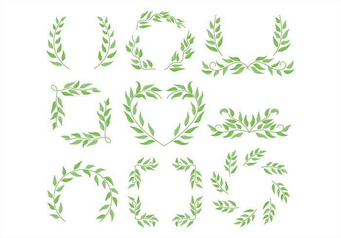 Cadre d'eucalyptus vecteur