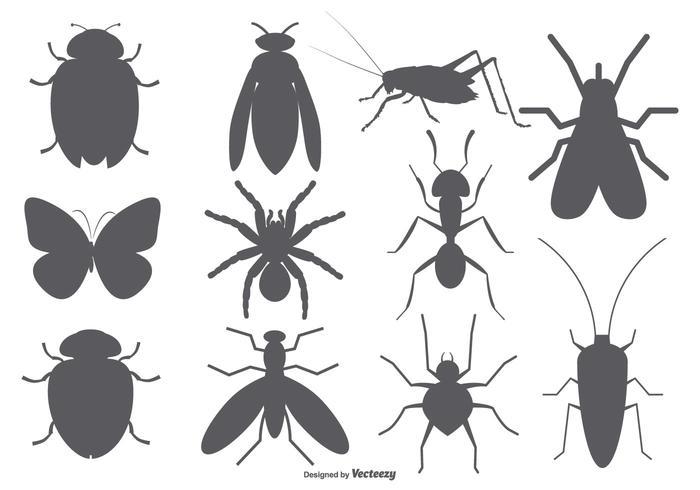 Formes vectorielles d'insectes vecteur