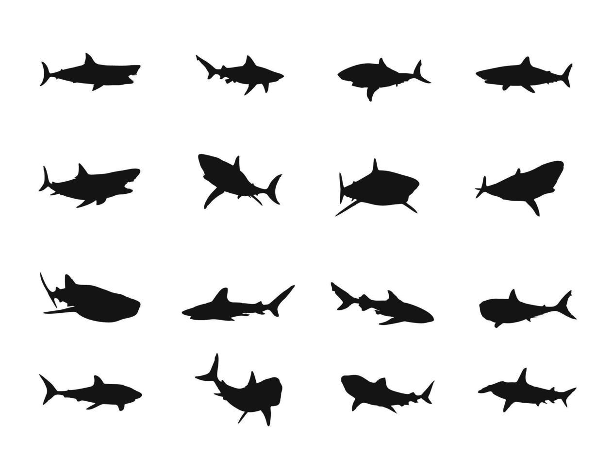 ensemble de silhouette de requin vecteur