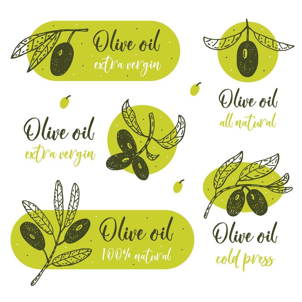 rameau d'olivier avec lettrage vecteur