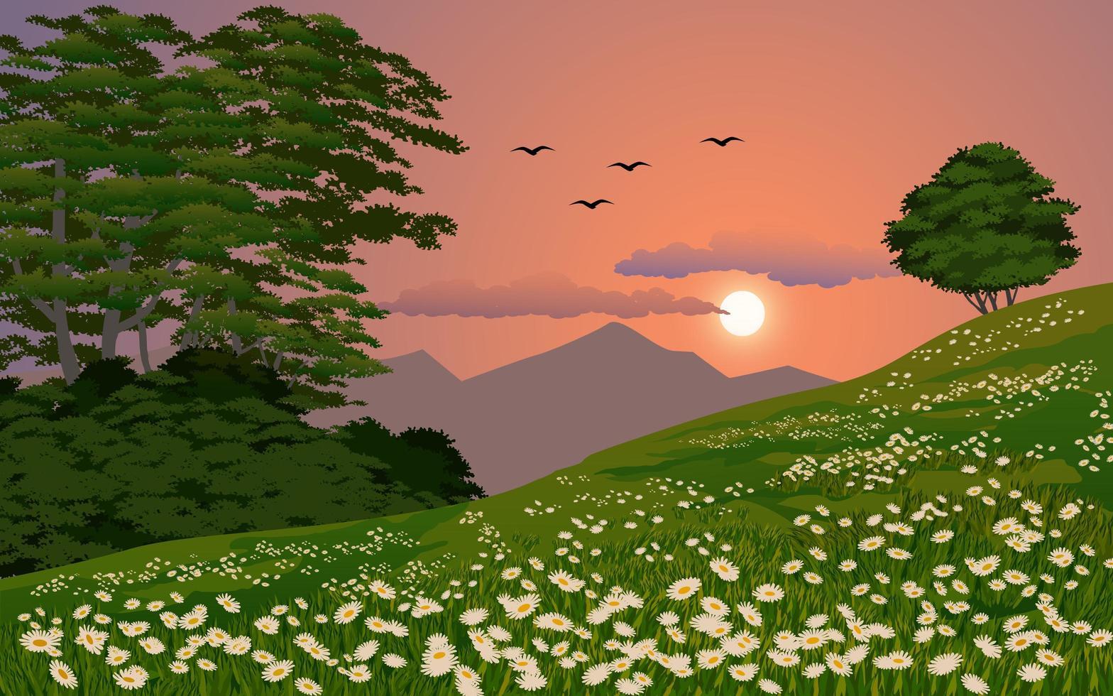 beau coucher de soleil au printemps vecteur