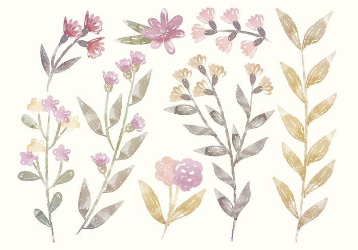 Éléments floraux d'aquarelle vectorielle vecteur