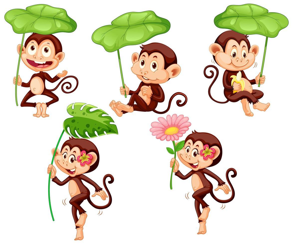 singes mignons avec feuille verte vecteur