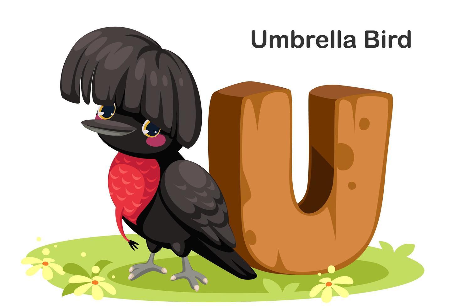 u pour oiseau parapluie vecteur