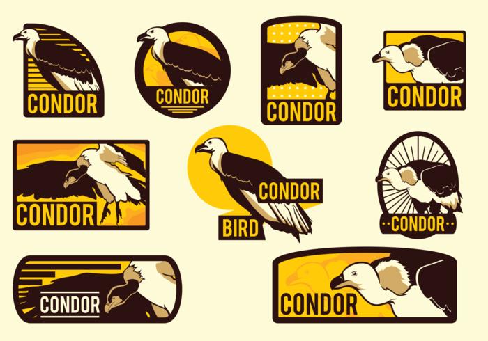 Étiquettes vectorielles Condor vecteur