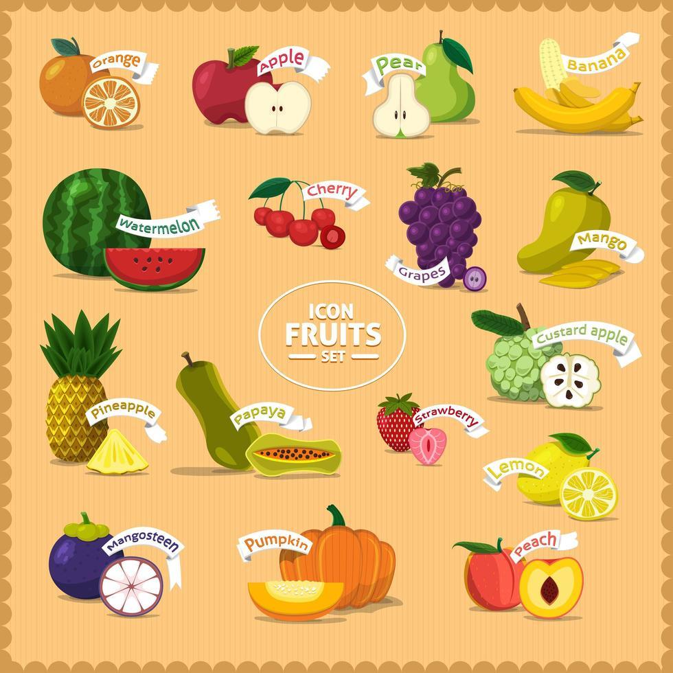 ensemble de fruits et de noms vecteur