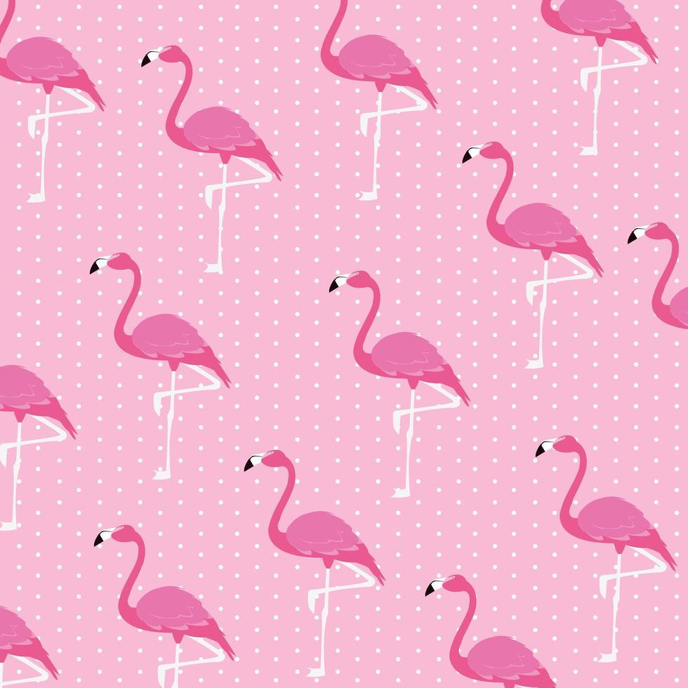 motif de troupeau de beaux oiseaux flamants roses vecteur