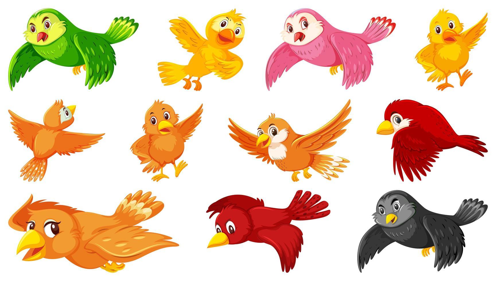 ensemble de personnages de dessins animés d'oiseaux vecteur