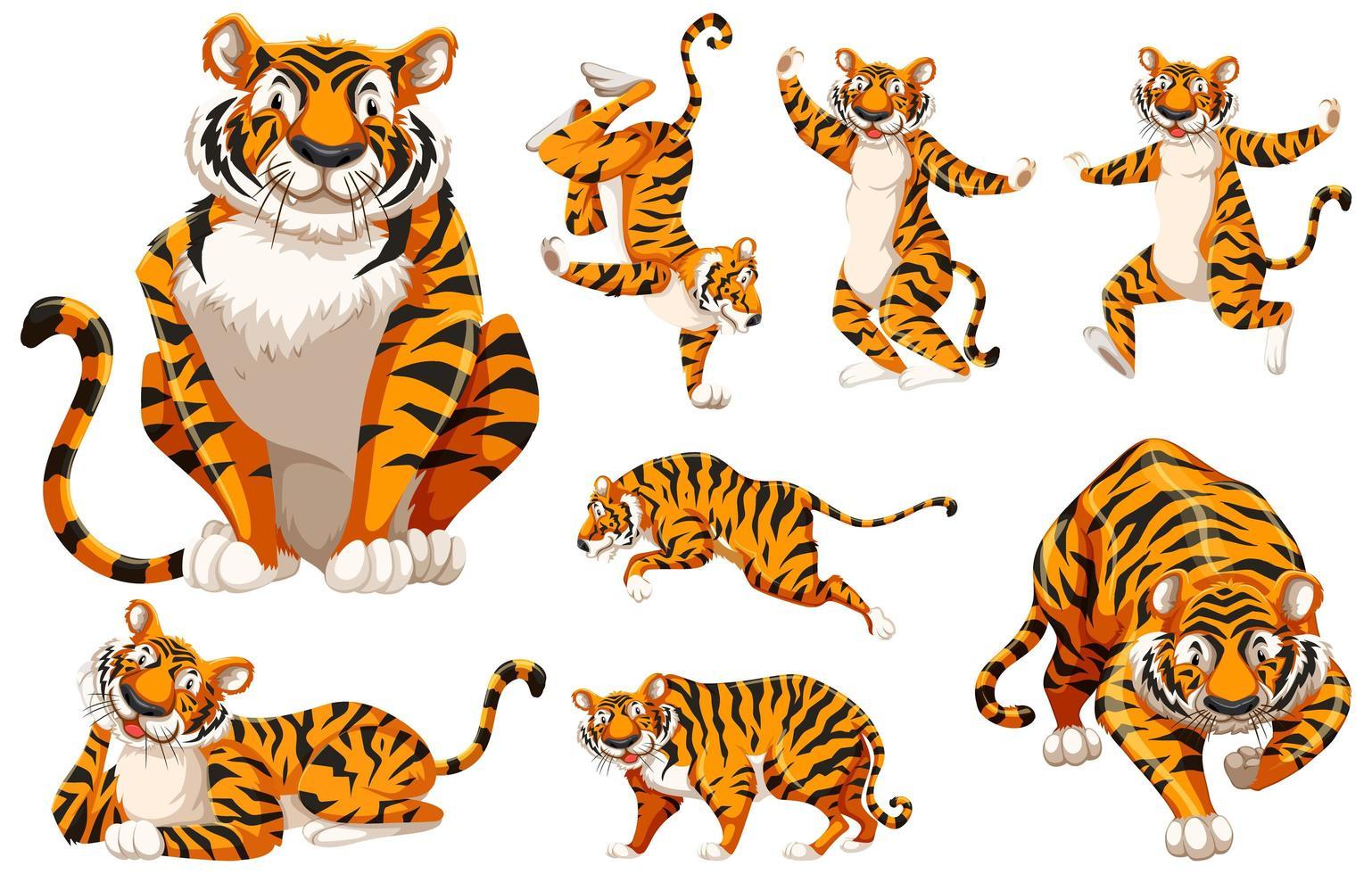 jeu de tigre de personnage de dessin animé vecteur