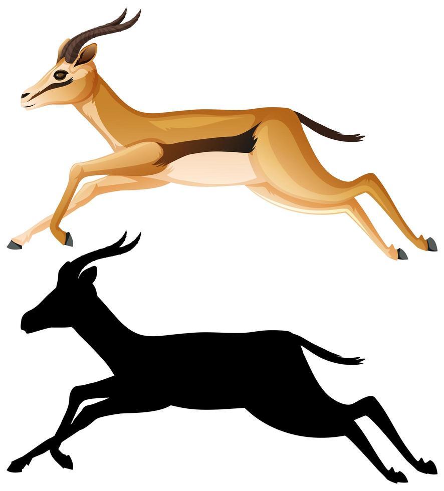 jeu de caractères de dessin animé de gazelle vecteur