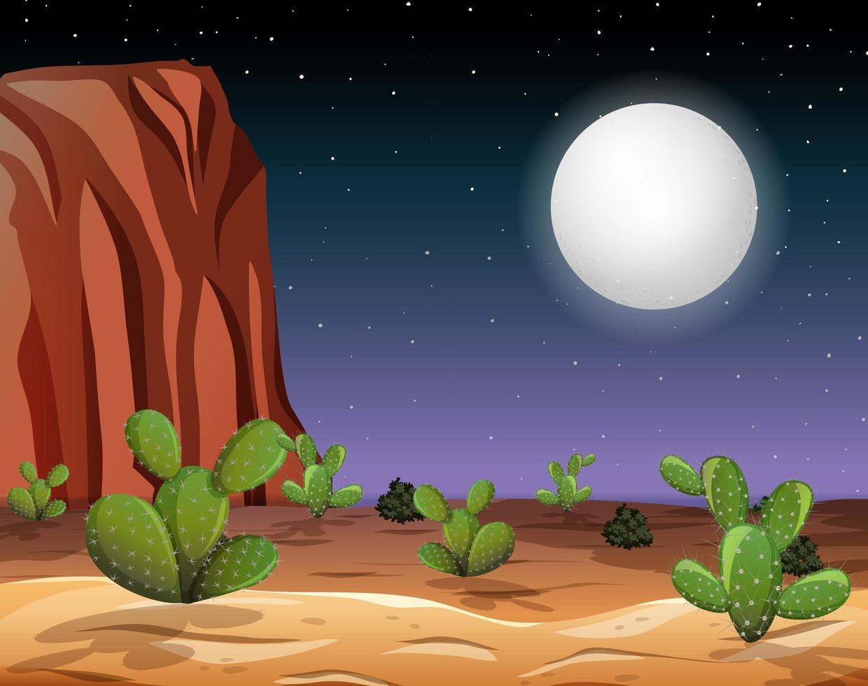 paysage désertique de nuit vecteur