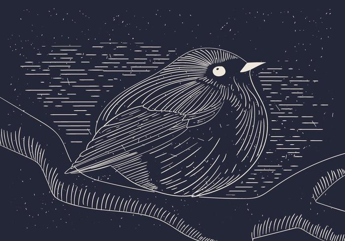Illustration vectorielle détaillée gratuite de Bird vecteur