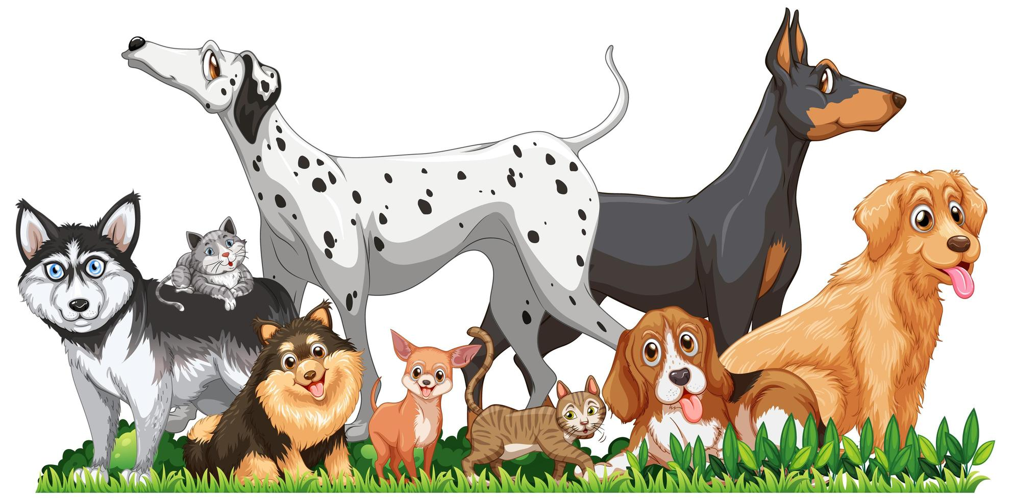 Groupe de chiens différents mignon isolé vecteur