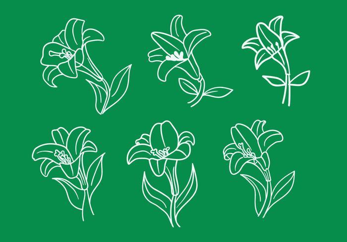 Vecteurs de Lily de Pâques vecteur