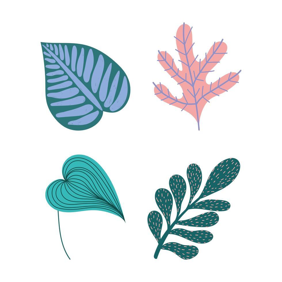 ensemble de feuilles et de feuillages tropicaux vecteur