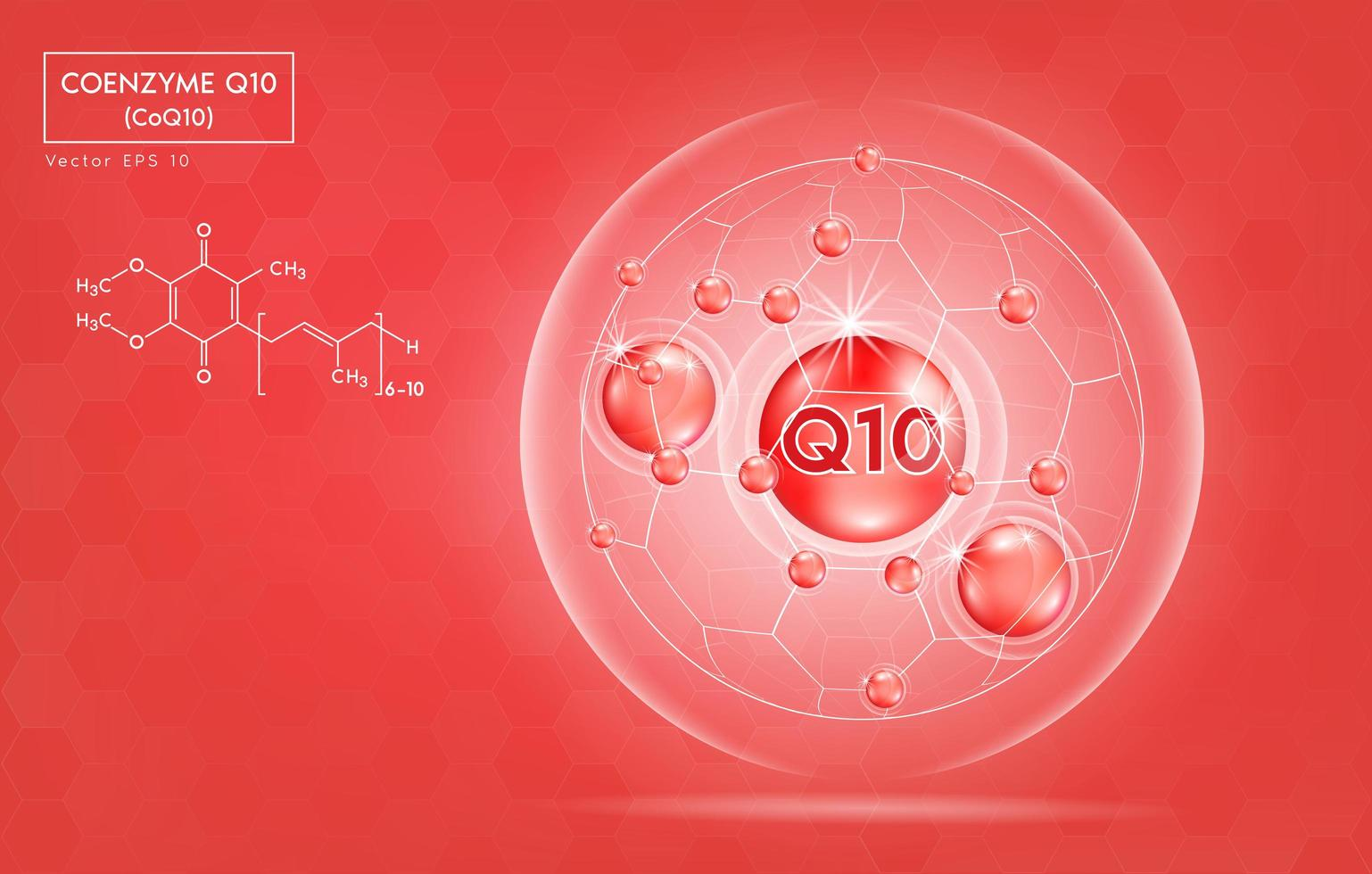 bannière de santé coenzyme q10 vecteur