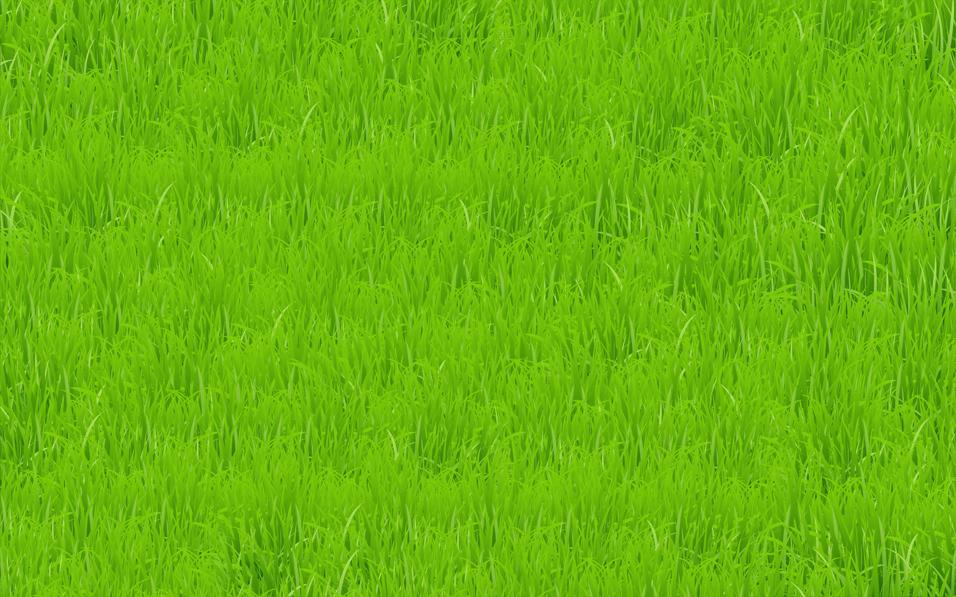 champ d'herbe verte vecteur