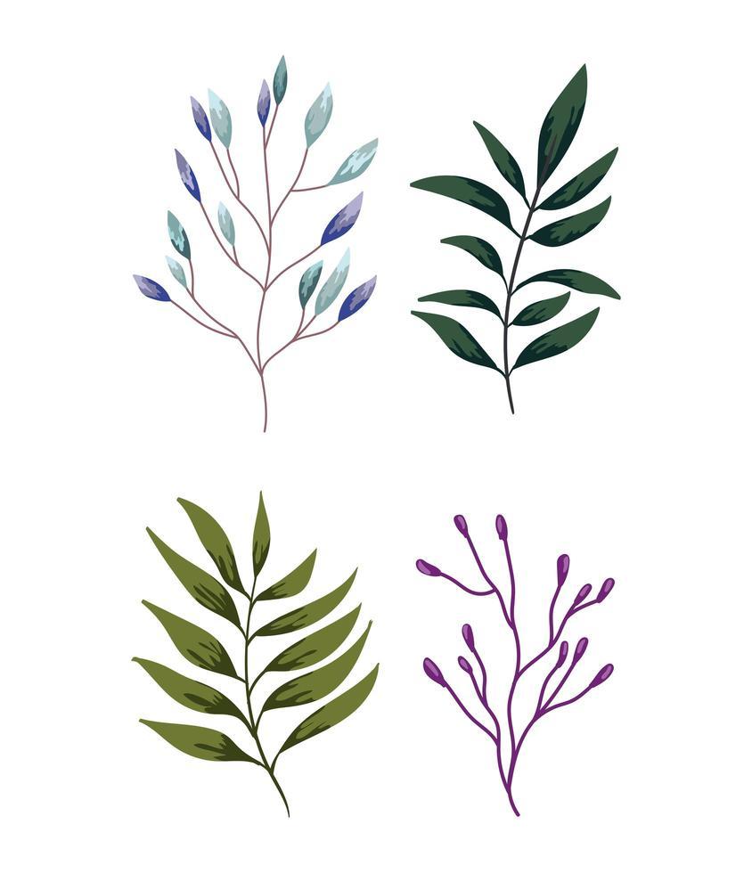 branches, feuillage, végétation. conception de la nature verdure vecteur