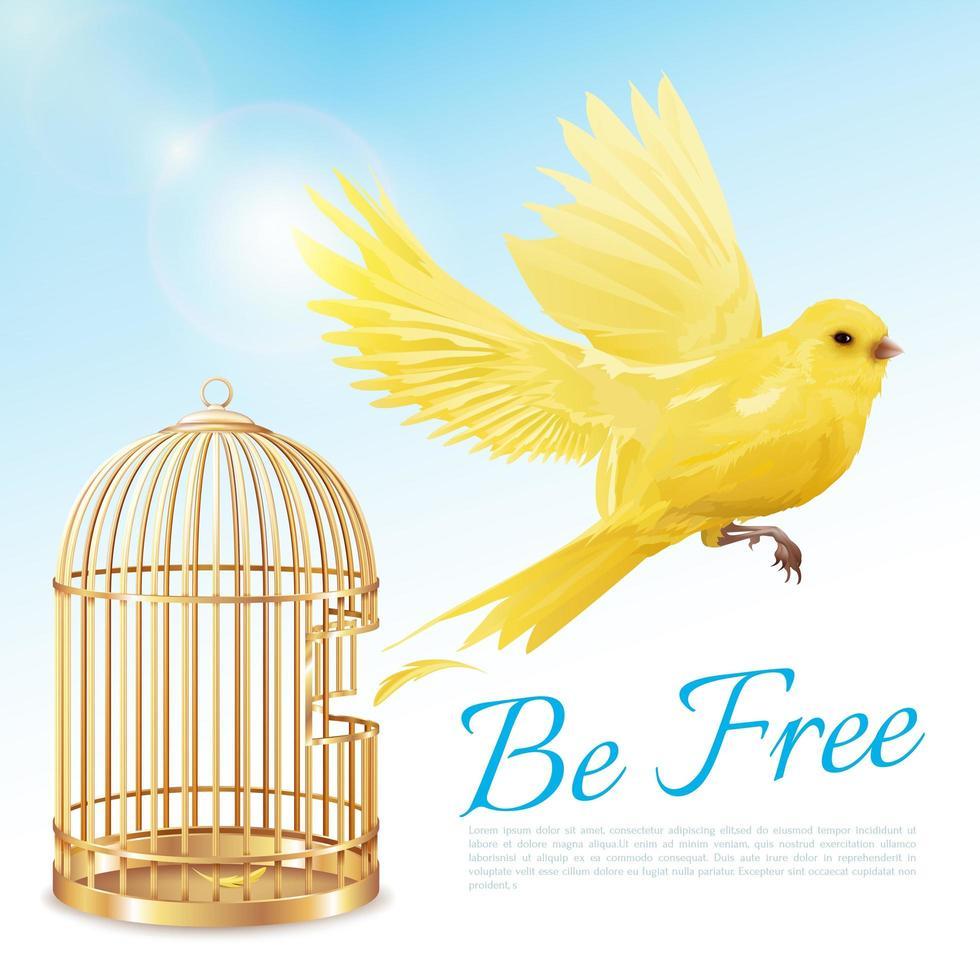 affiche de cage à oiseaux canari vecteur
