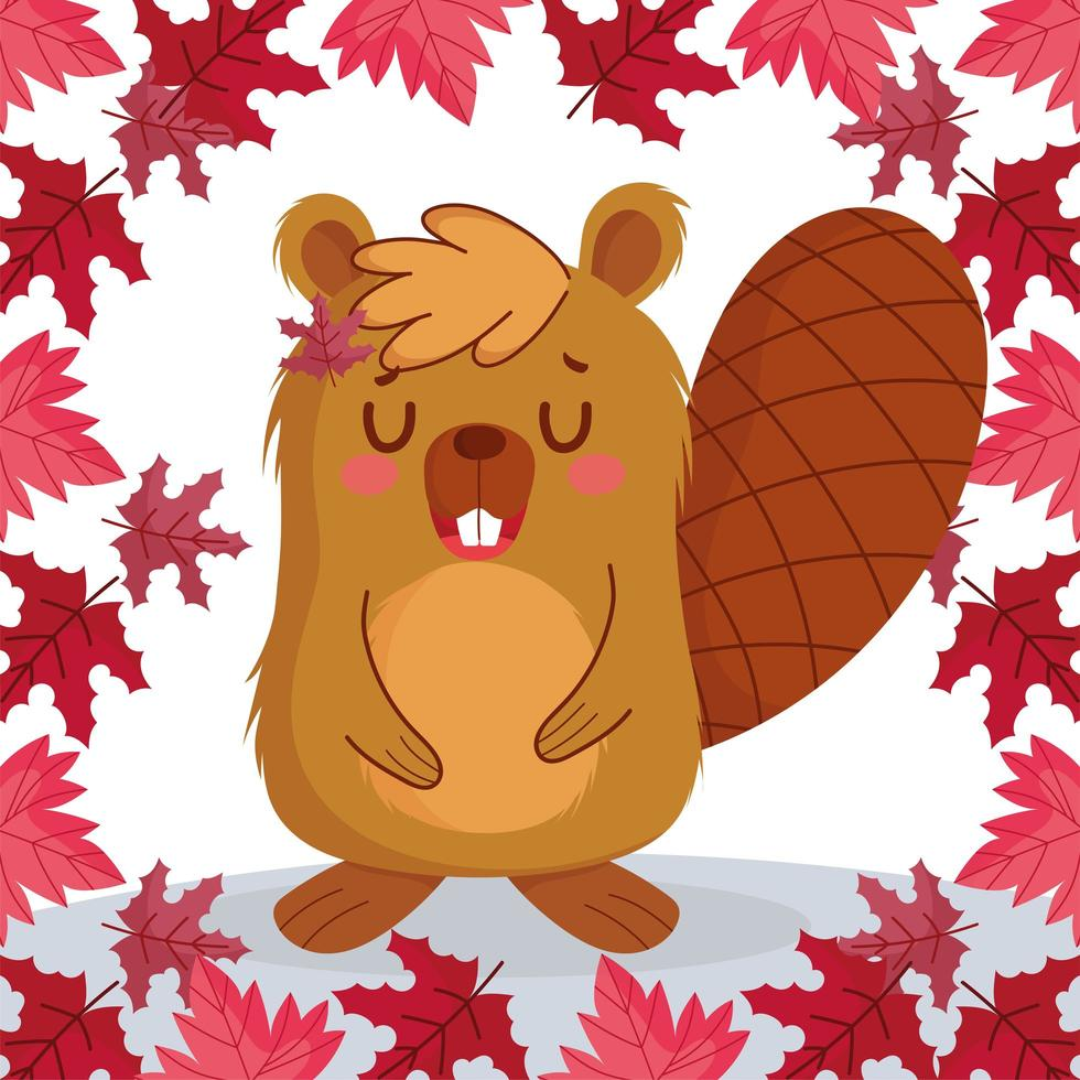 castor aux feuilles d'érable canadien vecteur