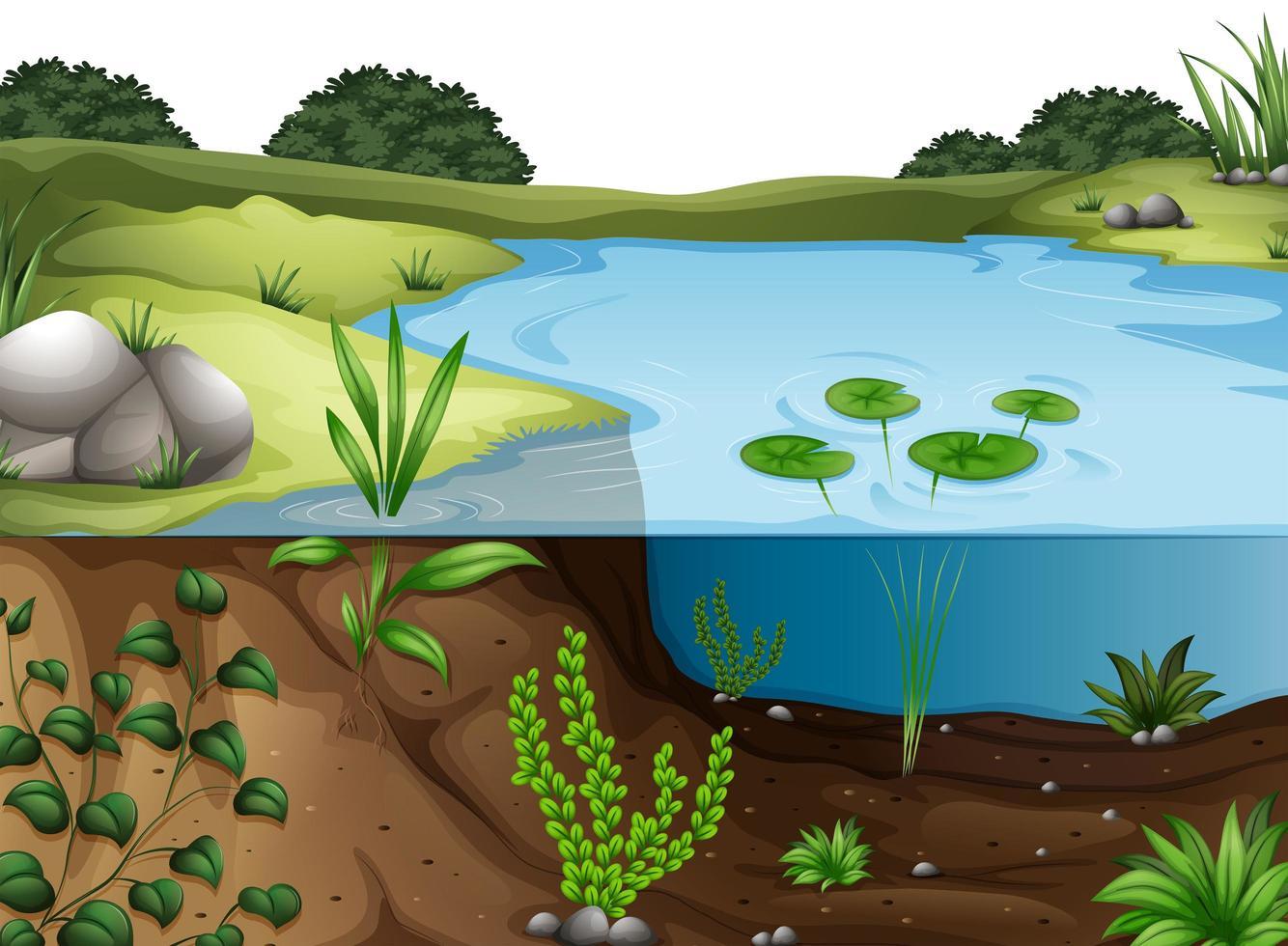scène de paysage environnement naturel vecteur