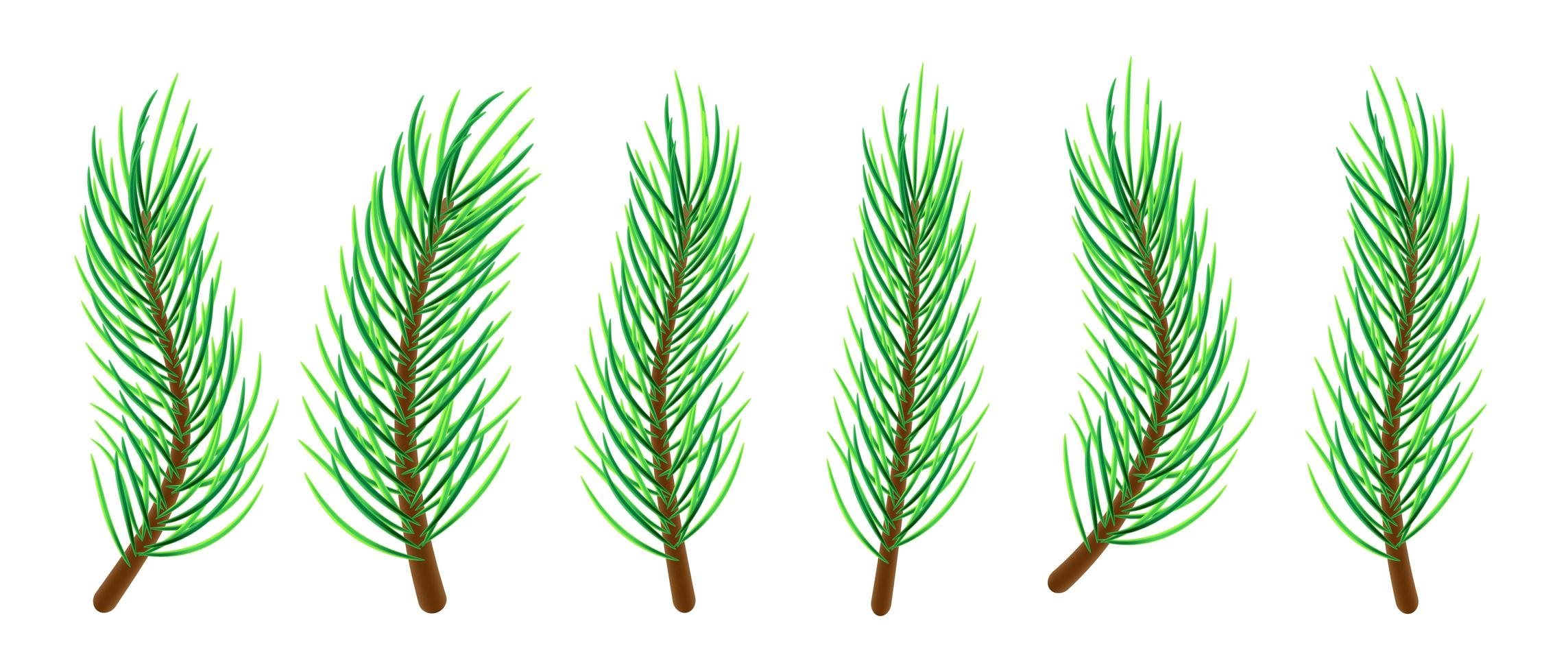 branches d'arbres de Noël vecteur