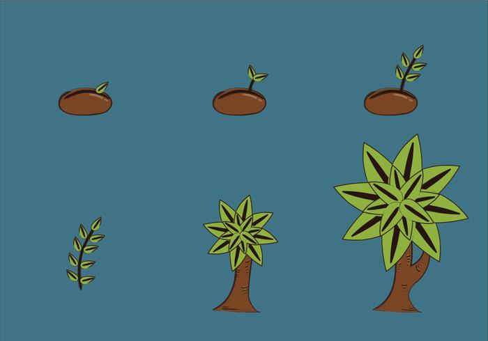 Gratuit Cycle de croissance des plantes vecteur Illustration