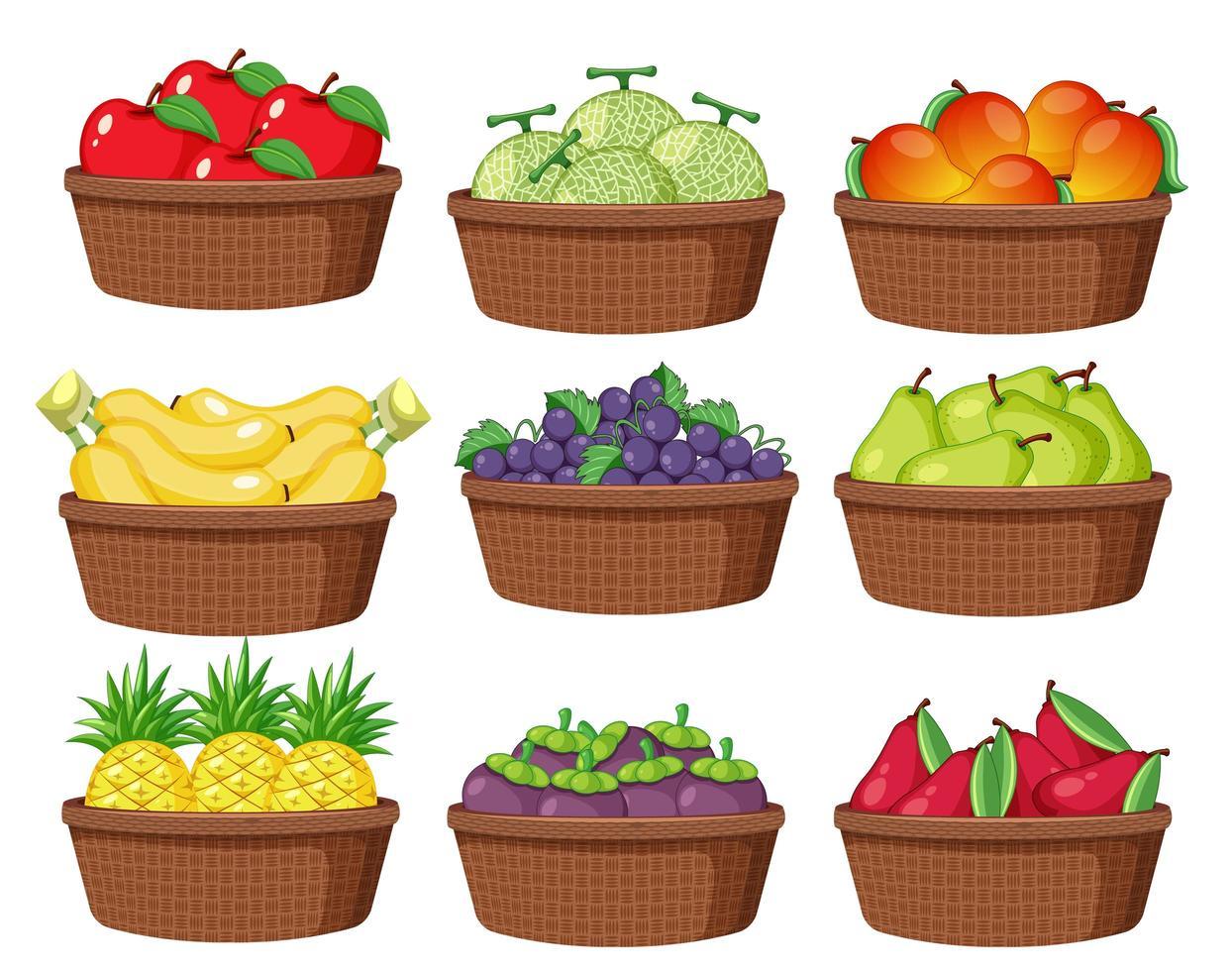 ensemble de fruits différents vecteur