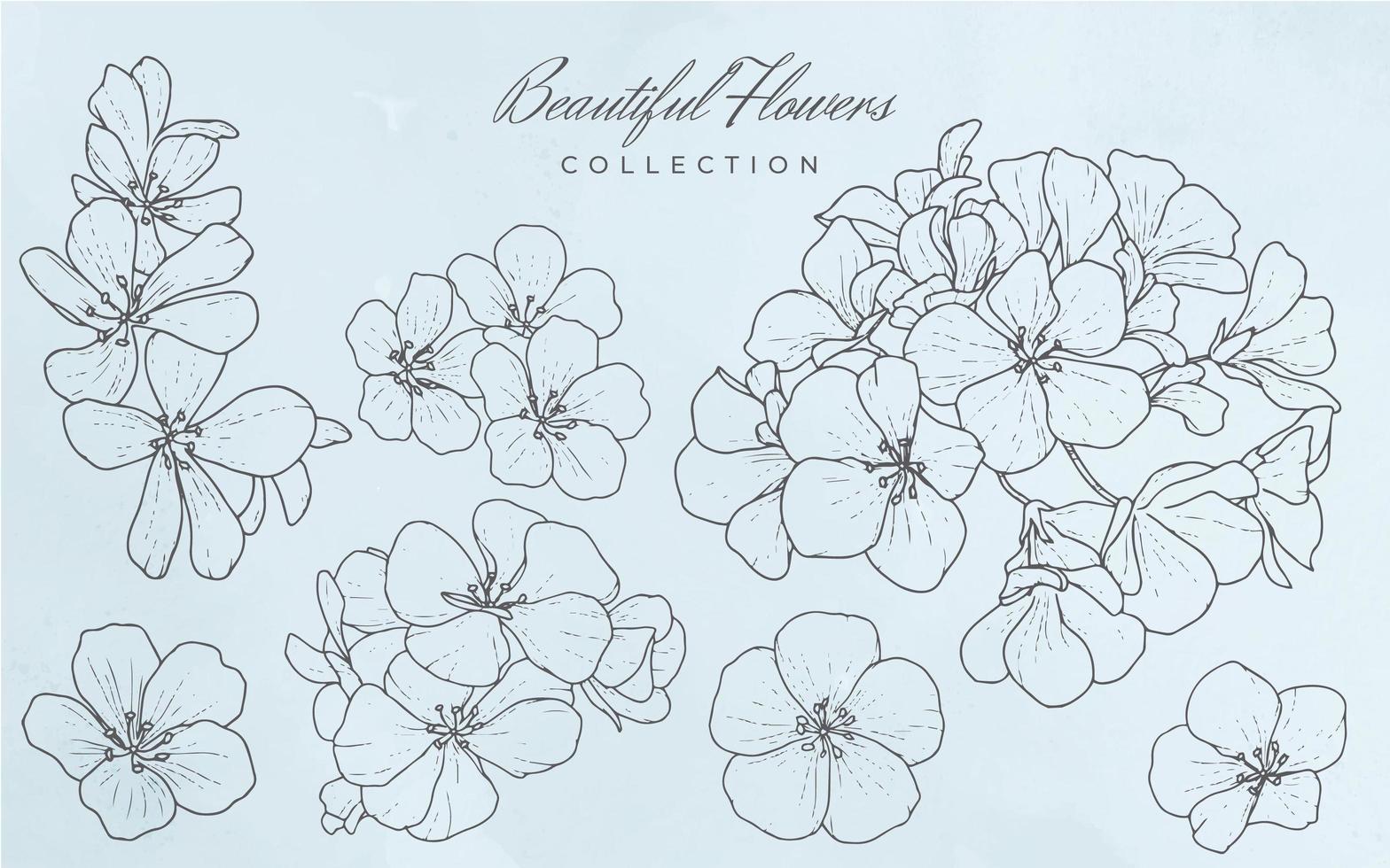 collection de belles fleurs vecteur