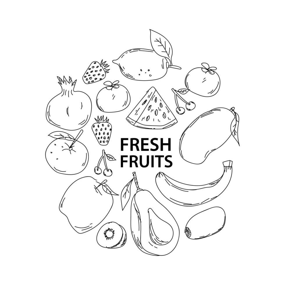 griffonnages de fruits frais dessinés à la main vecteur