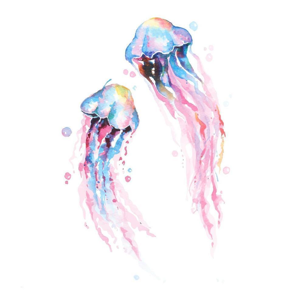 aquarelle de méduses dessinés à la main vecteur