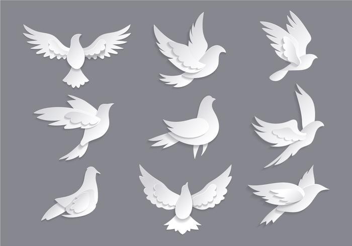 Dove ou Paloma Symboles de vecteurs de paix vecteur
