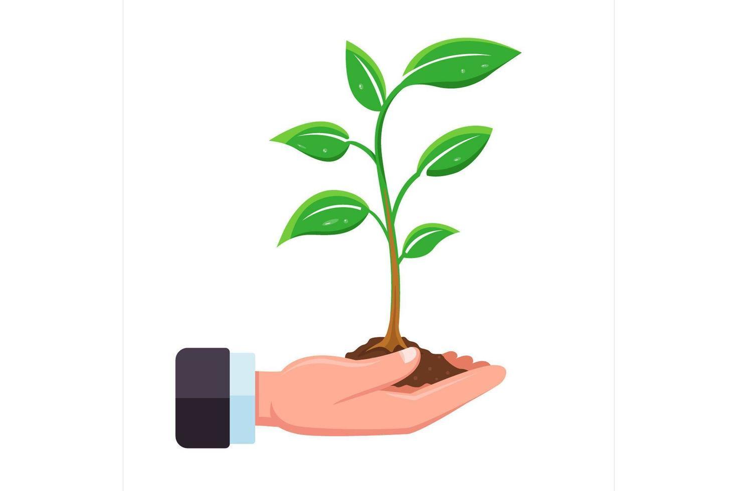 main tient une pousse d'arbre vecteur
